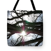 Jammer Lateralus Branching Trees Tote Bag