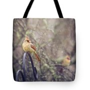 January Cardinals Tote Bag