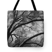 January Tree Tote Bag