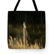 January's Gold 2013 Tote Bag