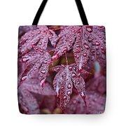 Japanese Acer Palmatum Atropurpurea Shrub Tote Bag