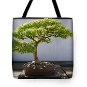 Japanese Bonsai Tree In National Tote Bag