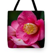 Japanese Camellia-the Official State Flower Of  Alabama Tote Bag