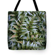 Japanese Ferns Tote Bag