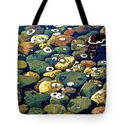 Japanese Garden Pool Rocks Tote Bag