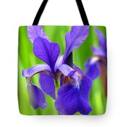 Japanese Iris By Kim Mobley Tote Bag