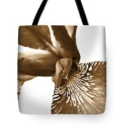 Japanese Iris Flower Sepia Brown 2 Tote Bag