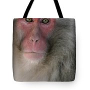 Japanese Macaque Tote Bag