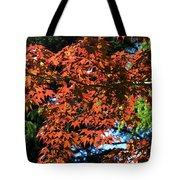 Japanese Maple Canopy Tote Bag