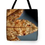 Japanese Maple Leaf Brown - 1 Tote Bag