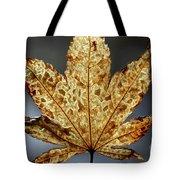 Japanese Maple Leaf Brown - 3 Tote Bag