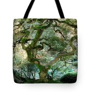 Japanese Maple Tree II Tote Bag