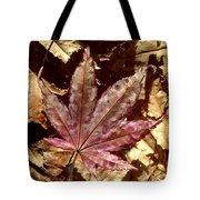 Japanese Maple Tree Leaves Tote Bag
