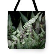 Japanese Painted Fern Tote Bag