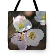 Japanese Quince 4 Tote Bag