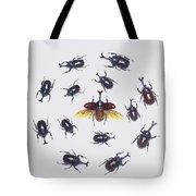 Japanese Rhinoceros Beetle Males Tote Bag