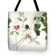 Japanese Tree Peony Tote Bag by  Lucy Cust