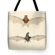 Javanese Bats Tote Bag