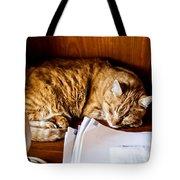 Jc Napping Tote Bag