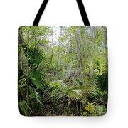 Jean Lafitte National Preserve Swamp Louisiana Tote Bag