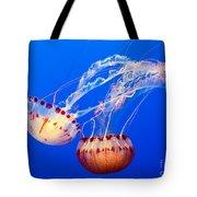 Jelly Dance - Large Jellyfish Atlantic Sea Nettle Chrysaora Quinquecirrha. Tote Bag