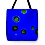 Jelly Fish Art Tote Bag