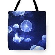 Jellyfish At Loceanographic Aquarium Tote Bag