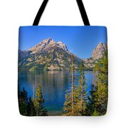 Jenny Lake Overlook Tote Bag