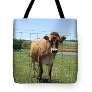 Jersey Cow In Georgia Tote Bag