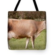 Jersey Cow In Pasture Tote Bag