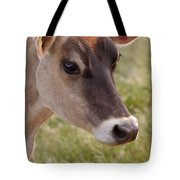 Jersey Cow Portrait Tote Bag