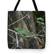 Jesus Christ Lizard Tote Bag