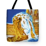Jesus Paid It All Tote Bag