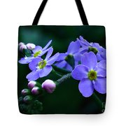 Jewel In The Shadows Tote Bag