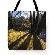 Jewel In The Trees Tote Bag by Debra and Dave Vanderlaan