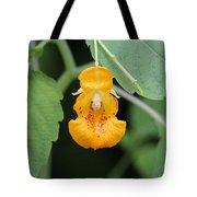 Jewel Weed Blossom Tote Bag