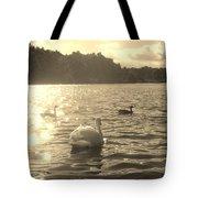 Jewels Of The Lake Tote Bag
