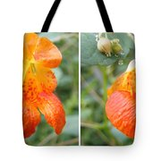 Jewelweed Flower In Stereo Tote Bag
