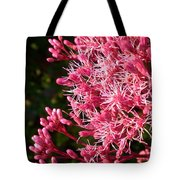 Joe Pye Weed Tote Bag