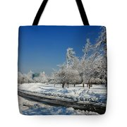 Jogger On Ice Tote Bag
