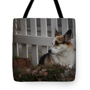 Johnny By The Fence Tote Bag