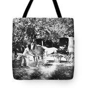 Johnston Horse Wagon Tote Bag