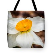 Jonquil 1 Tote Bag