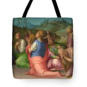 Joseph's Brothers Beg For Help Tote Bag