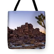 Joshua Sunset Tote Bag