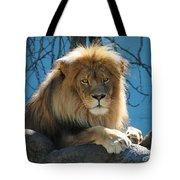 Joshua The Lion On His Rock Tote Bag