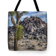 Joshua Tree 13 Tote Bag