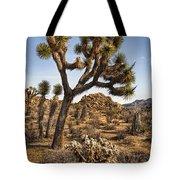 Joshua Tree 16 Tote Bag