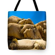 Joshua Tree 29 Tote Bag