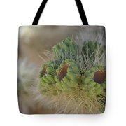 Joshua Tree Cholla Cactus Tote Bag